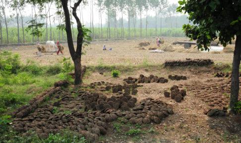 ハリドワール農場画像