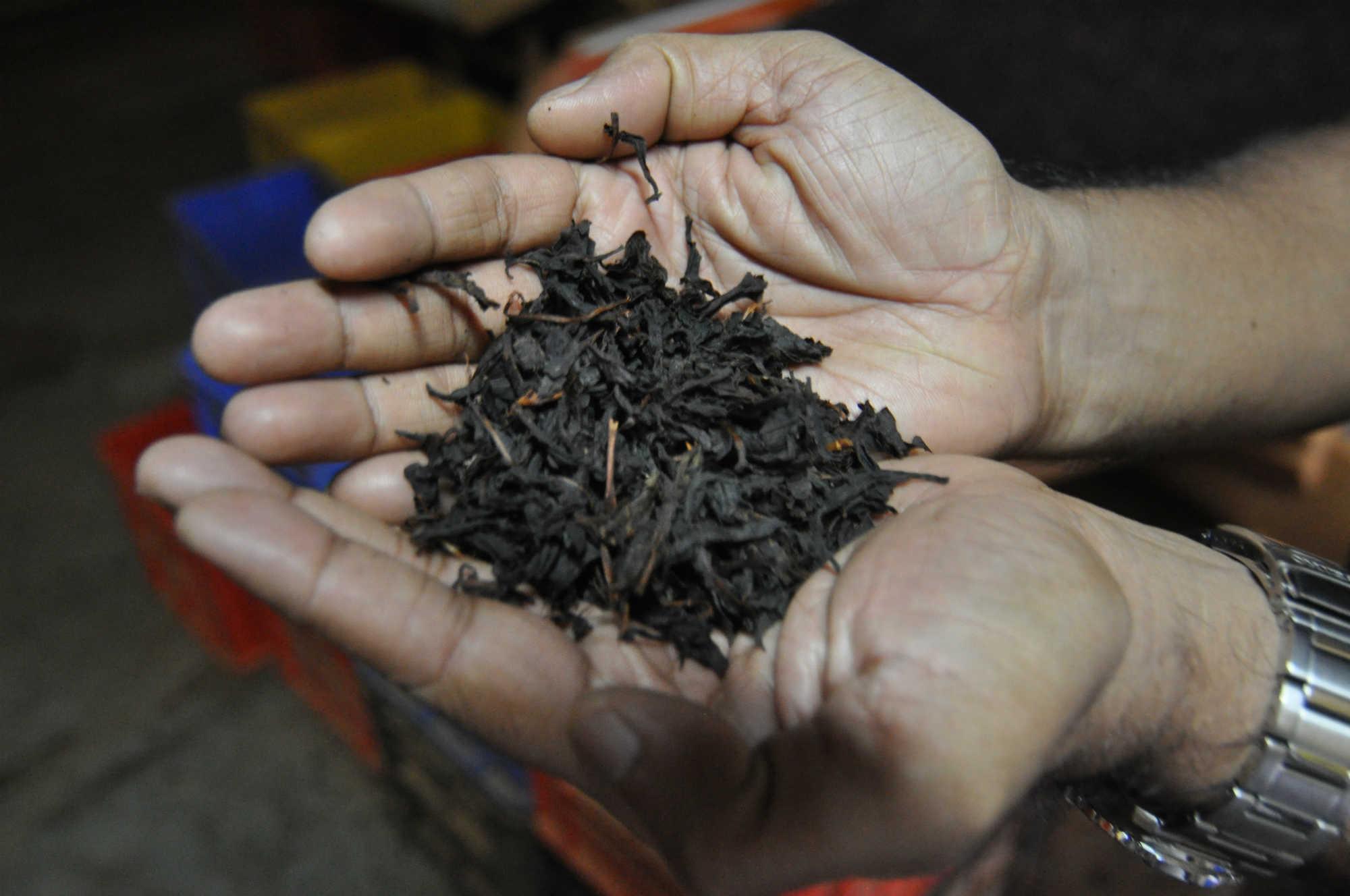 紅茶工場画像