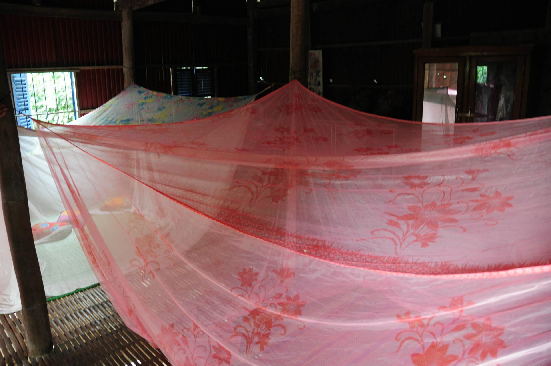 村では蚊帳の中でみんなで雑魚寝。